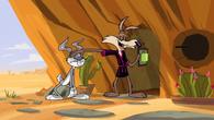CoyoteRabbitSquirrel6
