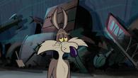 CoyoteRabbitSquirrel39