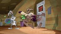 CoyoteRabbitSquirrel12