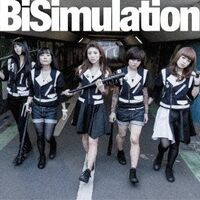 BiSimulation CD DVD B
