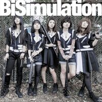 BiSimulation CD Maxi