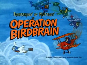 Wr dm operation birdbrain
