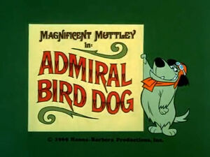 Wr dm admiral bird dog