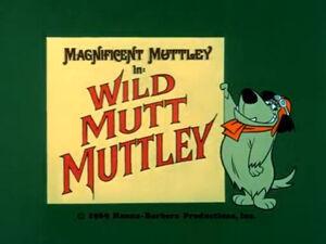 Wr dm wild mutt muttley