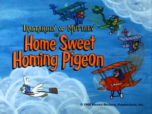 Wr dm home sweet homing pigeon