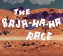 The Baja-Ha-Ha Race