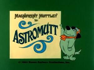 Wr dm astromutt