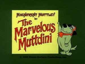 Wr dm marvelous muttdini