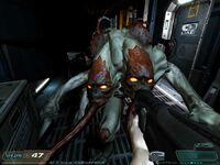 D3 Maggot