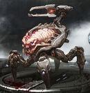 DE Arachnotron