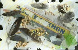 File:Janice Moreau bird days of summer.jpg