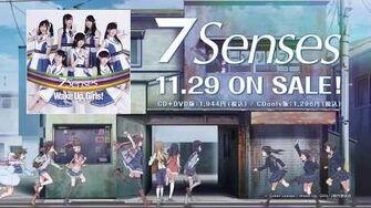 7 Senses CM