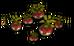 Tuberbulb (plant)