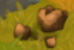 Desert Truffle (crop)
