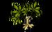 Maniok (plant)