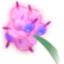 Crozolily Flower