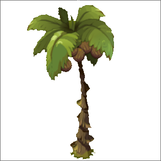 Kokonut Tree