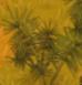 Palm Rod