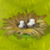 Crobak Nest