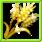 Golden Wheat Grain