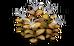Sweet Jute (plant)