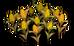 Corn (plant)