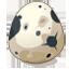 Piwi Egg