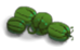 Watermelon (plant)