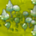 Plant puffball