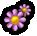 Icon Wild Plant