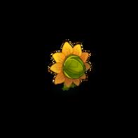 Exploding Sunflower