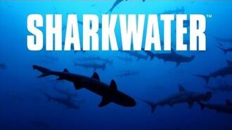 Sharkwater Trailer HD Deutsch German