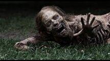 The Walking Dead Season 1 Trailer english HD