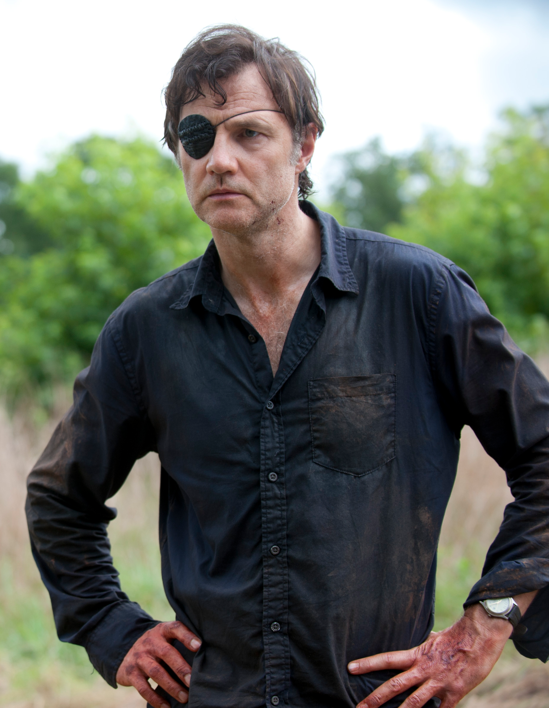 The Walking Dead Governor