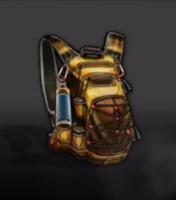 Brownbackpack