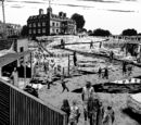 Hilltop Colony (Comic Series)