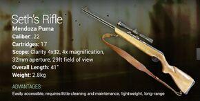 Seth's Rifle