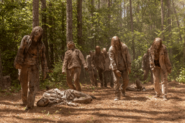 10x01 Walkers attack
