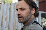 TWD 801 GP 0508 0128-RT