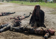 The-walking-dead-episode-804-ezekiel-payton-4-935