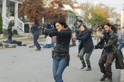 Normal TWD 716 GP 1114 0311-RT-min