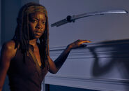 The-walking-dead-season-6-cast-michonne-gurira-9351