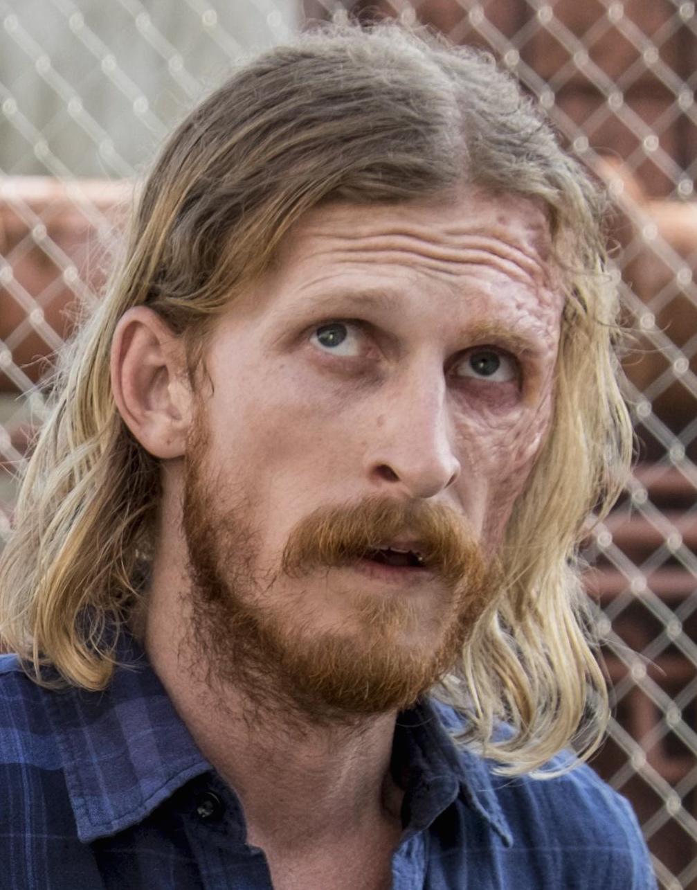 Dwight Tv Series Walking Dead Wiki Fandom Powered By Wikia