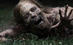 1000px-Zombiee