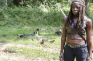 AMC 509 Michonne Mutilated Legs