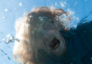 FTWD 201 Walker Underwater