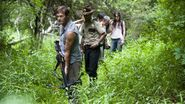 Walking dead what lies ahead
