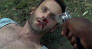 Rick grimes dgb 3