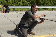 Normal TWD 709 GP 0823 0261-RT-min