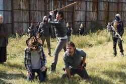 Normal TWD 716 GP 1111 0184-RT-min